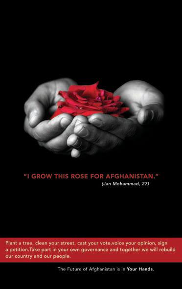 Poster rose